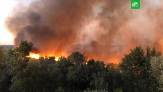 «Сцена из апокалипсиса»: под Ростовом горят заросли камыша