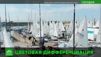 В Финском заливе проходит первенство России по парусному спорту