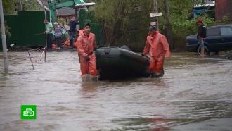 Непогода не помешает проведению ВЭФ во Владивостоке