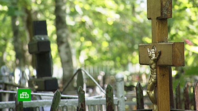 Нажива на горе: нуженли похоронному бизнесу новый закон.законодательство, похоронный бизнес, похороны, экономика и бизнес.НТВ.Ru: новости, видео, программы телеканала НТВ