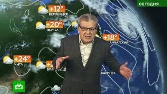 Прогноз погоды на 31 августа