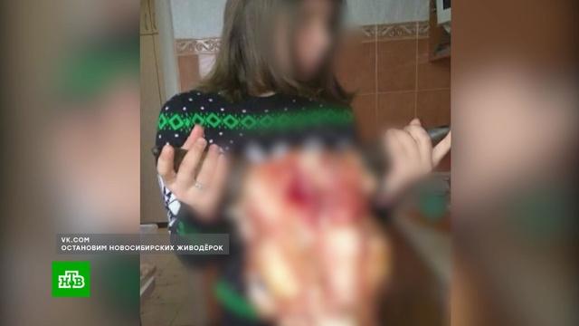 Школьниц из Новосибирска уличили в жестоких убийствах животных.Новосибирск, дети и подростки, жестокость, животные.НТВ.Ru: новости, видео, программы телеканала НТВ