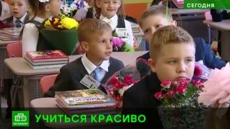 Новые школы и доплаты за классное руководство: как Петербург подготовился ко Дню знаний