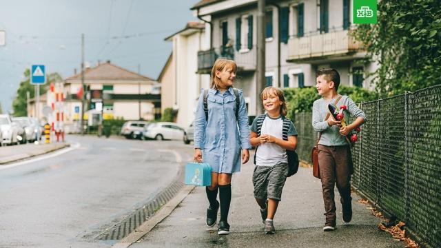 Сколько стоят сборы в школу в разных странах мира.дети и подростки, образование, школы.НТВ.Ru: новости, видео, программы телеканала НТВ