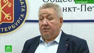 Наблюдателем на петербургских выборах в Москве станет артист