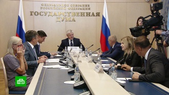 Комиссия Госдумы заподозрила немецкое СМИ впризывах кучастию внезаконной акции вМоскве