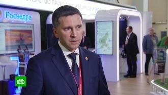 Кобылкин сообщил о прогрессе в переговорах с Китаем по проблеме хищнической рубки лесов