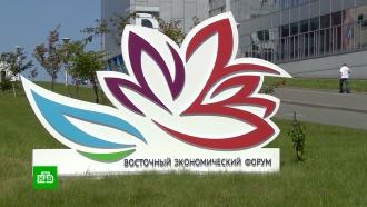 Сумма подписанных на ВЭФ контрактов превысила 1 трлн рублей