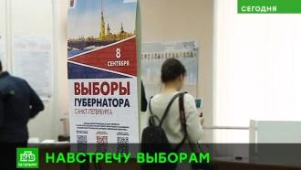 Дачные участки, волонтеры и больше видеокамер: как Петербург подготовился к выборам губернатора