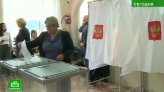 Самый активный избиратель Ленобласти живет под Кировском и Ломоносовым