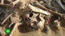 Под Смоленском нашли русско-французскую могилу времен войны 1812 года