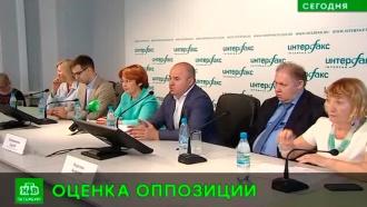 Итоги петербургских муниципальных выборов в«Партии роста» назвали успехом оппозиции