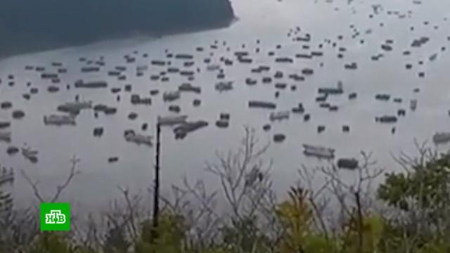 В Приморье за сутки задержали более 250 браконьеров из Северной Кореи.Приморье, Северная Корея, браконьерство, охота и рыбалка.НТВ.Ru: новости, видео, программы телеканала НТВ
