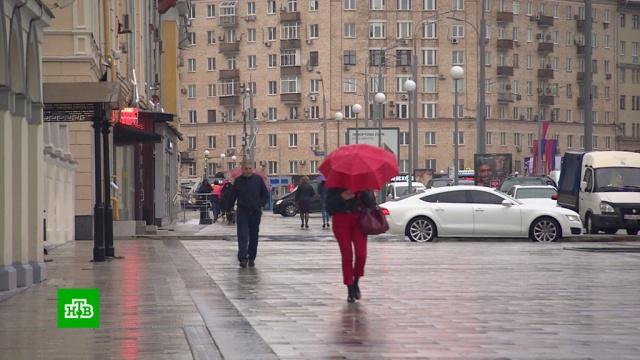 Последний теплый день: на Москву и Петербург надвигаются дожди и похолодание.Ленинградская область, Москва, осень, погода.НТВ.Ru: новости, видео, программы телеканала НТВ