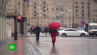 Последний теплый день: на Москву и Петербург надвигаются дожди и похолодание