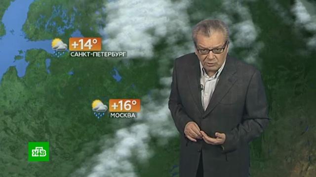 Прогноз погоды на 14сентября.погода, прогноз погоды.НТВ.Ru: новости, видео, программы телеканала НТВ