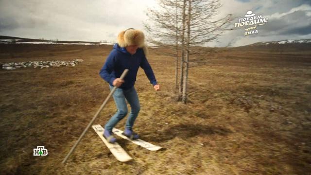 Стою на асфальте я в лыжи обутый: как ведущий НТВ бегал на лыжах без снега.Ямало-Ненецкий АО, традиции и обычаи, туризм и путешествия, эксклюзив.НТВ.Ru: новости, видео, программы телеканала НТВ