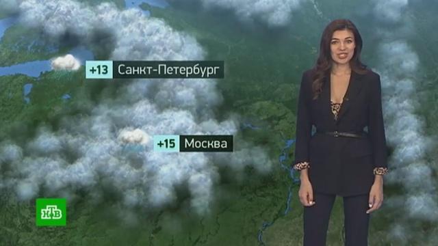 Утренний прогноз погоды на 16сентября.погода, прогноз погоды.НТВ.Ru: новости, видео, программы телеканала НТВ