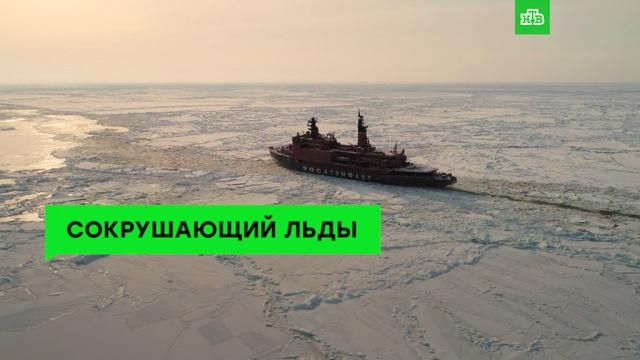 Запрет мобильников вшколах России.НТВ.Ru: новости, видео, программы телеканала НТВ