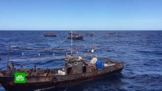 Умер один из северокорейских браконьеров, задержанных вЯпонском море