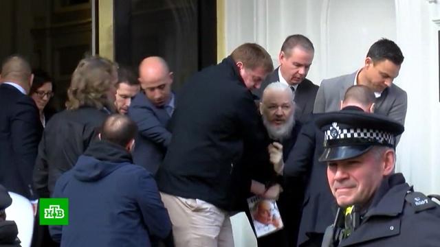 WikiLeaks: условия содержания Ассанжа хуже, чем утеррористов.WikiLeaks, Ассанж, Великобритания, тюрьмы и колонии.НТВ.Ru: новости, видео, программы телеканала НТВ