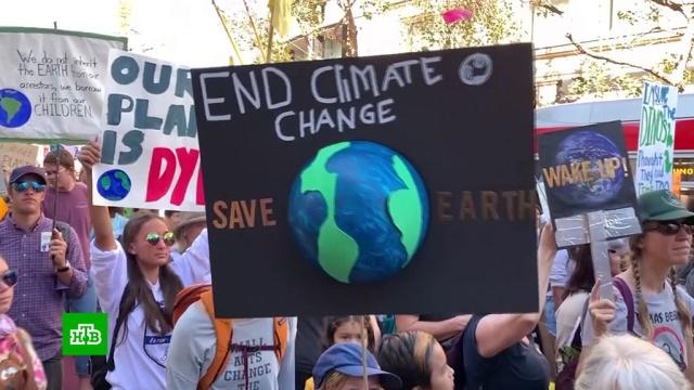 Трамп решил демонстративно игнорировать климатический саммит ООН.климат, экология.НТВ.Ru: новости, видео, программы телеканала НТВ