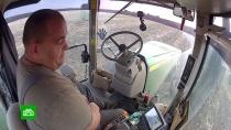 Как искусственный интеллект помогает воронежским фермерам