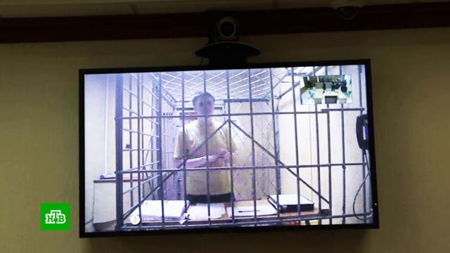 Приговор блогеру Синице признан законным.Интернет, Росгвардия, блогосфера, приговоры, суды.НТВ.Ru: новости, видео, программы телеканала НТВ