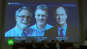 Объявлены имена лауреатов Нобелевской премии по физиологии имедицине