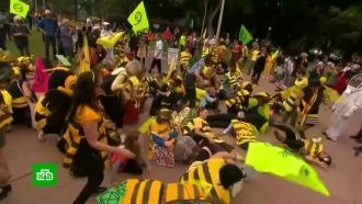 Участники экологических протестов вышли на улицы Сиднея вкостюмах пчел