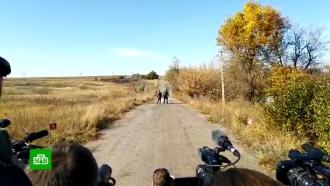 Украинские силовики сорвали отвод сил вДонбассе