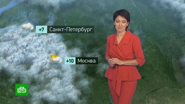 Утренний прогноз погоды на 10 октября.погода, прогноз погоды.НТВ.Ru: новости, видео, программы телеканала НТВ