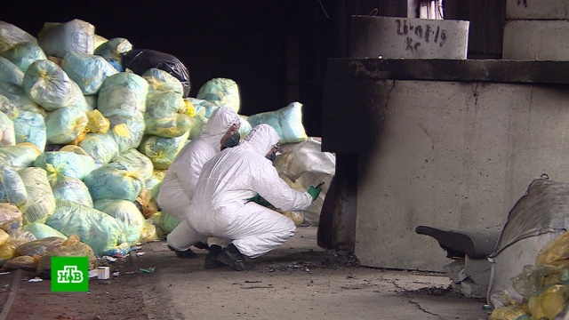 Биоматериалы из нескольких регионов нелегально сжигали в Кургане.Курганская область, Следственный комитет, медицина, мусор, полиция.НТВ.Ru: новости, видео, программы телеканала НТВ