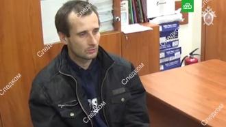 Видео допроса предполагаемого убийцы <nobr>9-летней</nobr> Лизы