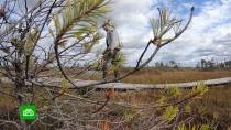 Белорусское болото бьет рекорды по посещаемости туристами