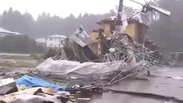 «Хагибис» разбушевался: жертвами тайфуна вЯпонии стали два человека.Япония, стихийные бедствия.НТВ.Ru: новости, видео, программы телеканала НТВ