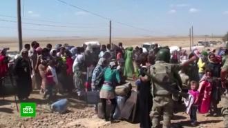 ВСирии назревает новая гуманитарная катастрофа