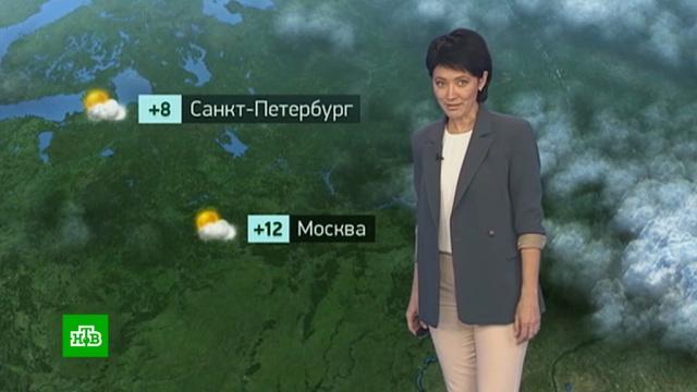 Утренний прогноз погоды на 15 октября.погода, прогноз погоды.НТВ.Ru: новости, видео, программы телеканала НТВ