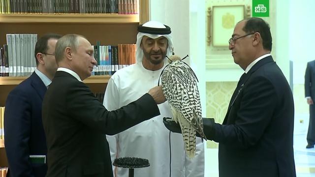 Путин подарил кречета принцу Абу-Даби.ОАЭ, Путин, подарки.НТВ.Ru: новости, видео, программы телеканала НТВ