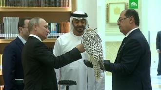 Путин подарил кречета принцу <nobr>Абу-Даби</nobr>