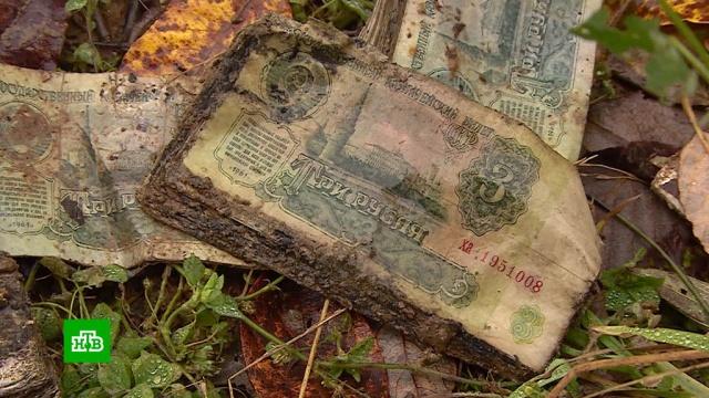 ВКостромской области бьют тревогу из-за опасного захоронения банкнот.Костромская область, экология.НТВ.Ru: новости, видео, программы телеканала НТВ