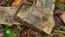 ВКостромской области бьют тревогу <nobr>из-за</nobr> опасного захоронения банкнот
