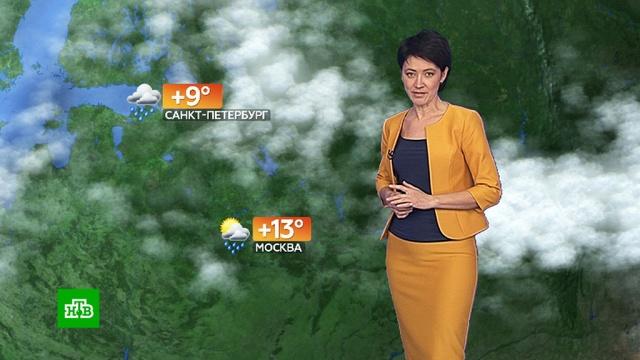 Прогноз погоды на 18 октября.погода, прогноз погоды.НТВ.Ru: новости, видео, программы телеканала НТВ
