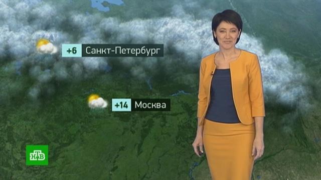 Утренний прогноз погоды на 17октября.погода, прогноз погоды.НТВ.Ru: новости, видео, программы телеканала НТВ