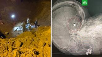 ВПодмосковье нашли тела депутата иее родных, убитых в2012году
