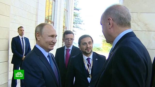 Переговоры Путина иЭрдогана проходят вСочи.переговоры, Турция, Сирия, Путин, Сочи, Асад, США, Эрдоган.НТВ.Ru: новости, видео, программы телеканала НТВ