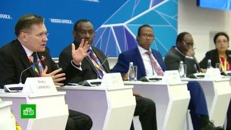 Глава «Росатома» обосновал экономическую выгоду проектов вАфрике