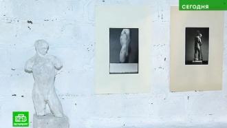 Современное петербургское искусство загнали в ангар