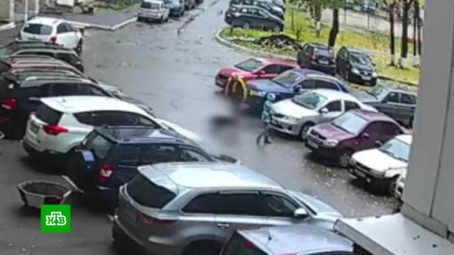 Стаффордширский терьер разорвал пекинеса на глазах уего 11-летней хозяйки.Вологодская область, дети и подростки, нападения, полиция, собаки, жестокость.НТВ.Ru: новости, видео, программы телеканала НТВ