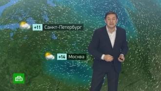 Утренний прогноз погоды на 23октября